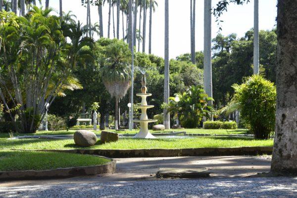 Jardim Velho - Paraíba do Sul
